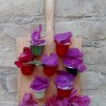 Cápsulas de café recicladas, Mini Jardín Vertical decorativo