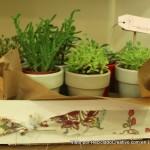 La Bella Elisa flores y eventos visto por Reciclado Creativo