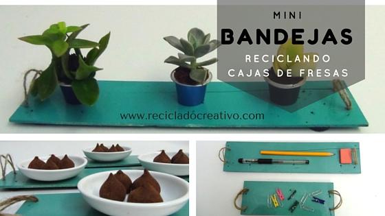 Bandejas_planas_con_cajas_de_fresas_recicladas