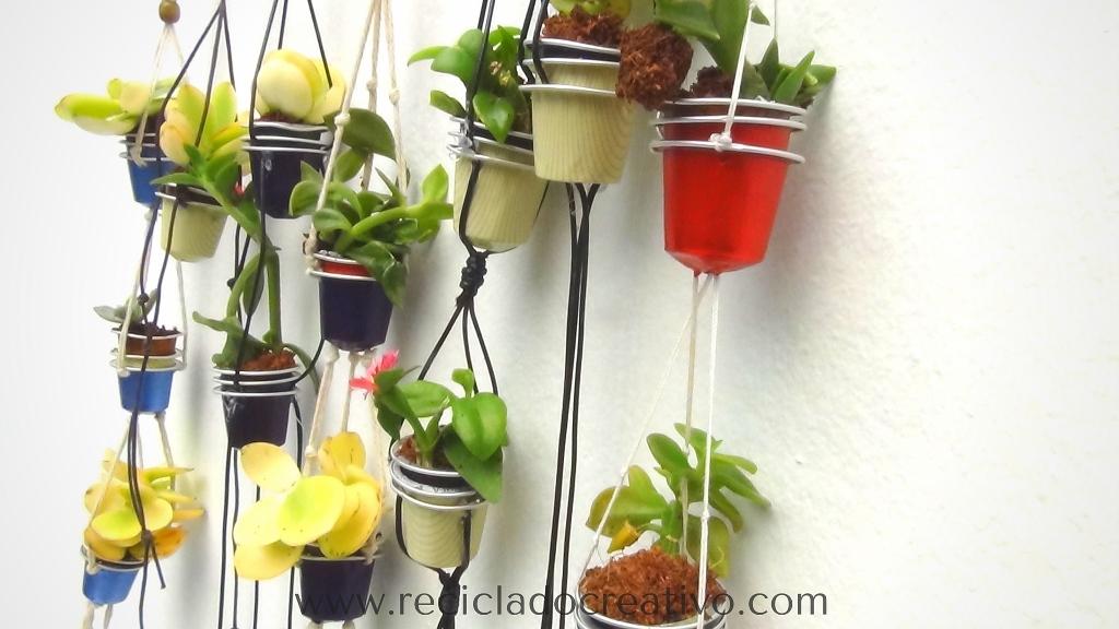 Mini macetas con plantitas sucuentas en cápsulas de café DIY