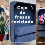 Cajas de fresas de madera recicladas y convertidas en estantes decorativos