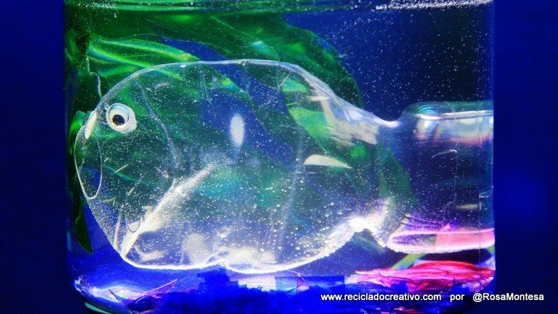Pez con una botella de coca cola dentro de una pecera con for Como hacer una laguna artificial para peces