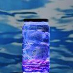 Medusa con una botella de plástico