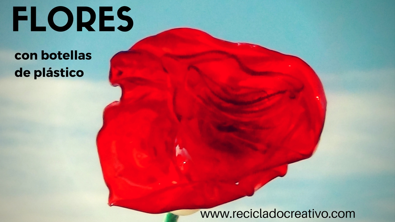 Rosas rojas reciclando botellas de plástico PET