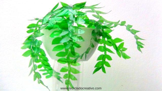 Plantas verdes con botellas de plástico PET