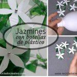 Ideas para hacer jazmines con botellas de plástico