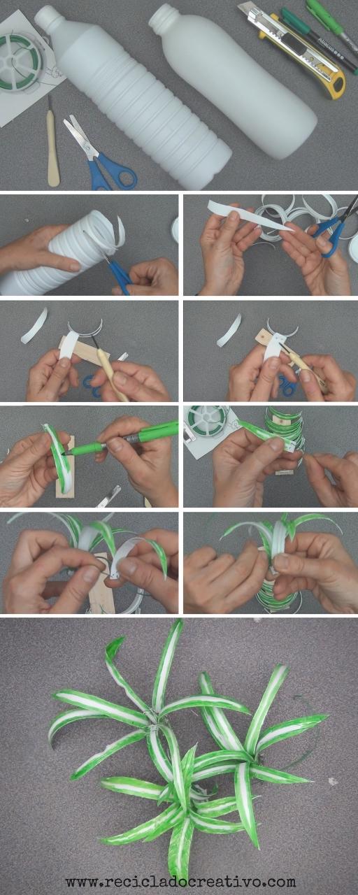 Paso a paso para realizar Plantas de cintas o malamadre con botellas de plástico Reciclado Creativo