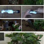 Gardening with plastic bottles - Jardinería con botellas de plástico recicladas