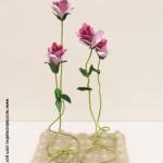 Cómo realizar flores rosas con hueveras de cartón recicladas How to make flowers out fo recycled egg cartons http://youtu.be/8450l1XT6Ww