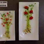 Lentejas germinadas en casa