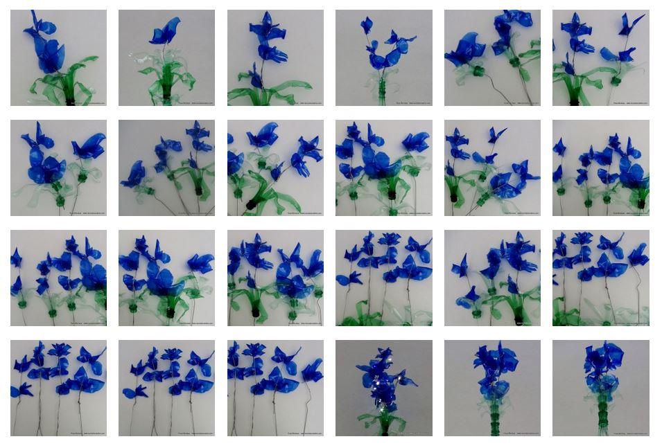 Blaue Blumen - Flores azules - Blue Flowers