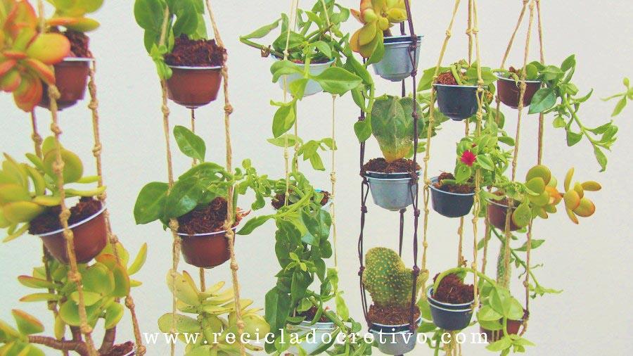 Mini macetero jardín vertical con cápsulas de café