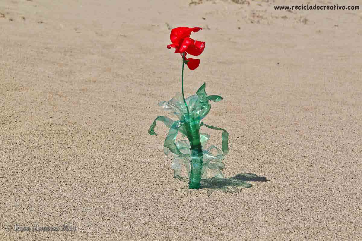 Rosa Montesa Concurso de fotografía Upcycling
