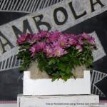 Bambola Casa Creativa Valencia Visto por Reciclado Creativo Rosa Montesa